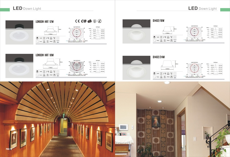 LED ARCHITECTURAL DOWN LIGHT